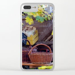 Straw baskets Clear iPhone Case