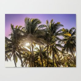 PURPLE AND GOLD SKIES Canvas Print