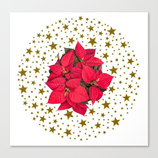 Red Christmas flower and sparkly gold stars Canvas Print