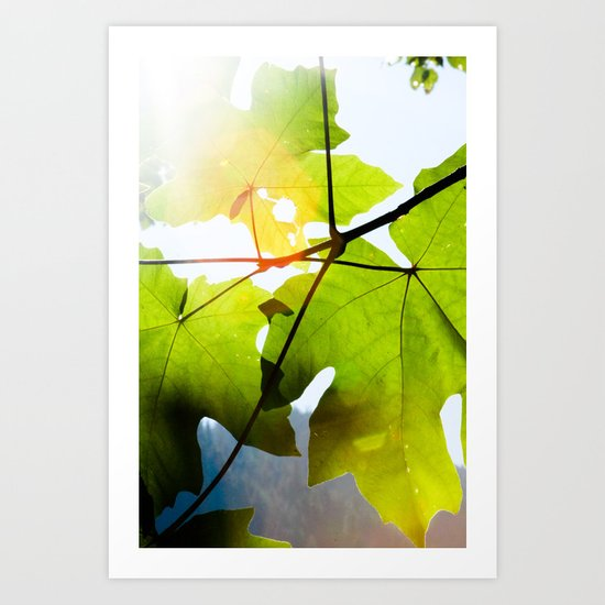 see the light Art Print