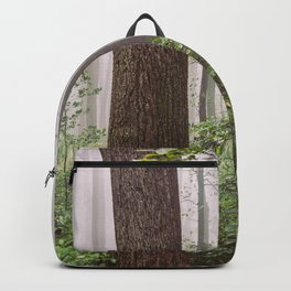 Great Smoky Mountains National Park - Forest Fog Adventure IV Backpack