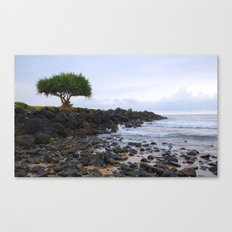 It's lonely at the top Canvas Print