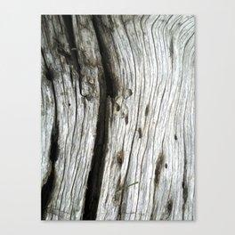 """""""Drift"""" Canvas Print"""