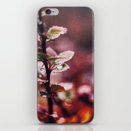 Enchanting iPhone Skin