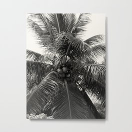 Coconut! Metal Print