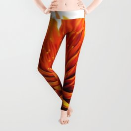 The Secret World Inside You Leggings
