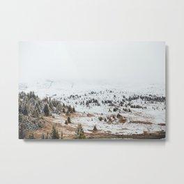 Sunshine Meadows Metal Print