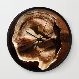 Dinosaur egg with embryo Wall Clock