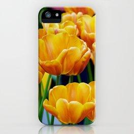 Yellow Orange Tulips iPhone Case
