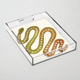 Watercolor Snake Acrylic Tray