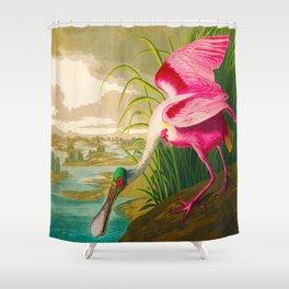 Roseate Spoonbill Bird pink Shower Curtain