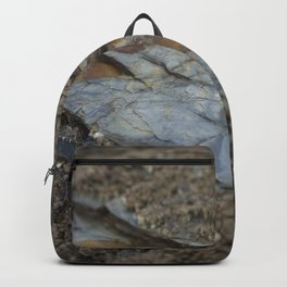 Beautiful Natural Rock Texture Among Barnacles Backpack