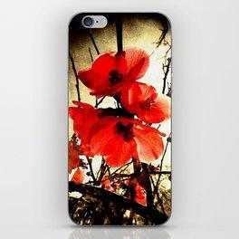 Spring Red 3, Royal Botanical Gardens - Melbourne iPhone Skin