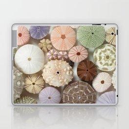 Urchin A Plenty... Laptop & iPad Skin
