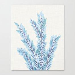 Blue Juniper Branches Botanical Canvas Print