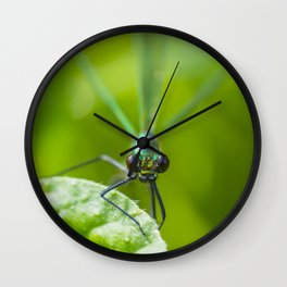 The delicate lady Wall Clock