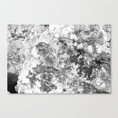 Living Sandstone Canvas Print