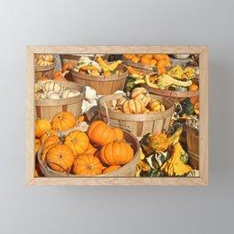 Pumpkins at the Farmers Market Framed Mini Art Print