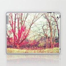 Ruby Winter Laptop & iPad Skin