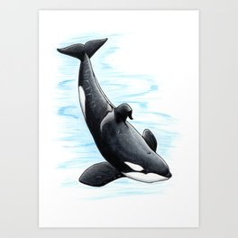 Bingo - Draw Every Captive Orca Project nr. 2 Art Print