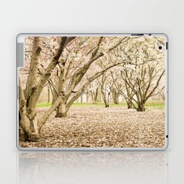 Blossom of Spring Laptop & iPad Skin