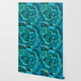 malachite abalone Wallpaper