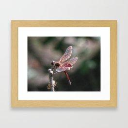 Small Dragon 6, Fantasy Framed Art Print