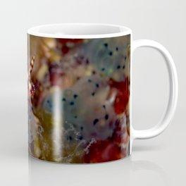 Hypselodoris maculosa Coffee Mug