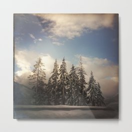 For the Love of Trees. Snoqualmie, Washington. Metal Print