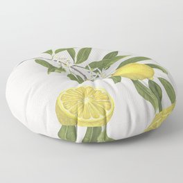 Lemon Tree Floor Pillow