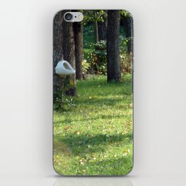 Extraordinary suggestion.... iPhone Skin