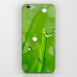 Green Grass Grows, Water droplets, Macro Fine Art Photography iPhone Skin