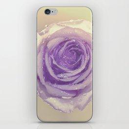 SUNLIT MAUVE ROSE iPhone Skin