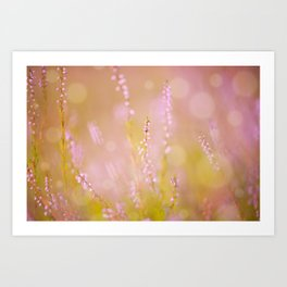 Subtle pink heather macro Art Print