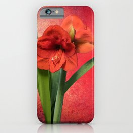 Red Amaryllis iPhone Case