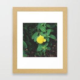 Saison Framed Art Print