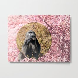 Baboon at Afternoon Tea- South Africa Metal Print