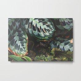 Leaves of Adelaide Botanical Metal Print