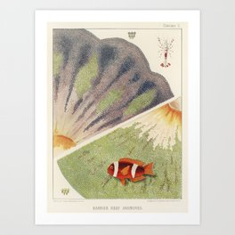 Vintage Great Barrier Reef and Clown Fish Illustration Art Print
