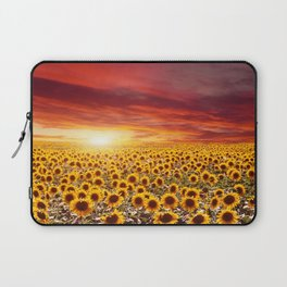 Field of blooming sunflowers on a background sunset Laptop Sleeve