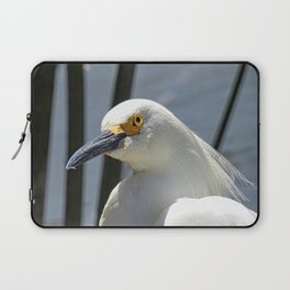 At A Glance Laptop Sleeve