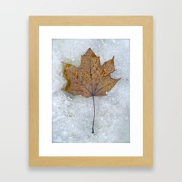 Thawing Out Framed Art Print