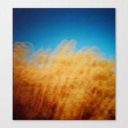 Wheat Waiver Canvas Print