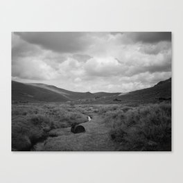 Prairies Canvas Print