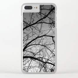 November Tree Clear iPhone Case