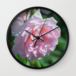 Luxuriant Blooming Pink Rose Flower Wall Clock