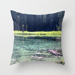 Pink and Teal Swamp Throw Pillow