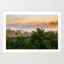 Foggy Mornings Art Print