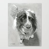 border collie Canvas Prints featuring Border Collie by Sarahphim Art