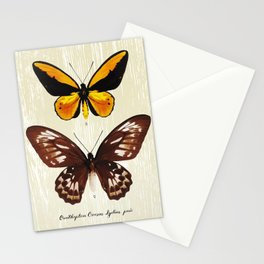 Butterfly08_Ornithoptera Croesus Lydius Stationery Cards
